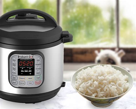 rice cooker pressure cook jasmine brown electric perfect pot instant cooking quick instantpot