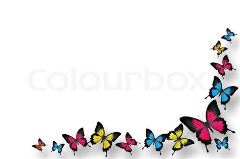 butterflies border design stock photo colourbox