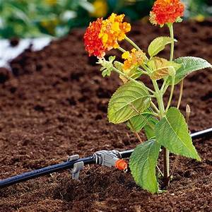 Gardena Bewässerungssystem Set : lichtenberg garten gartenbau lichtenberg budenheim ~ Lizthompson.info Haus und Dekorationen