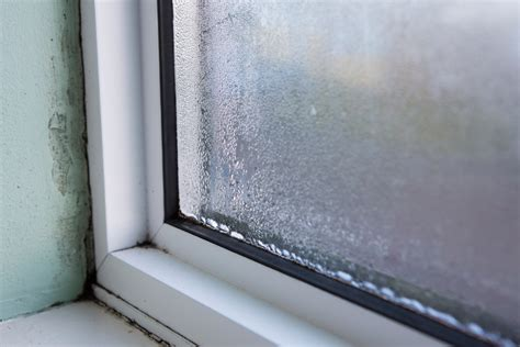 How Do You Replace A Window Sill by How To Remove And Prevent Mold On Your Window Sills