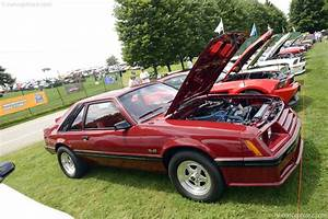 Auction results and data for 1982 Ford Mustang (GL, GLX, 5.0L, JG, GT, V-8) - Conceptcarz