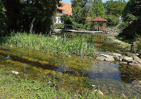 Gartenteich Tipps Fuer Die Pflege by Teiche Planen Bauen Pflegen Tipp 4 Gartenteich