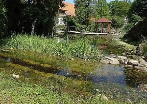 Gewächshaus Bepflanzen Plan : teiche planen bauen pflegen tipp 4 gartenteich ~ Lizthompson.info Haus und Dekorationen