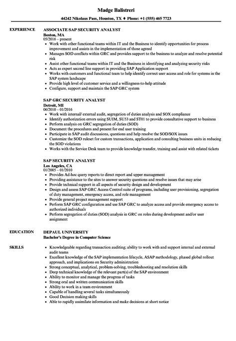 sap security analyst resume samples velvet jobs