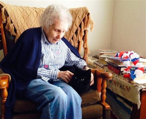 Animal Assisted Therapy Cats