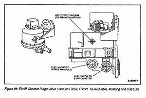 1998 Ford Mustang Evap System Diagram