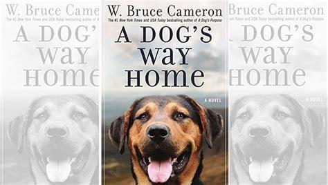 win  copy   dogs  home pop culturalistcom