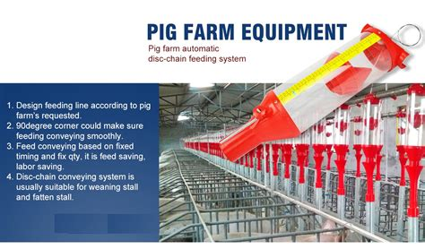 farm pig system weaning automatic piglets china crate modern piggery reliable
