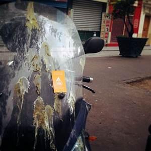 Nettoyage Scooter : faites nettoyer votre moto ou scooter paris ~ Gottalentnigeria.com Avis de Voitures