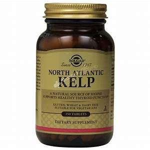 Herbal : Solgar North Atlantic Kelp -250 Tablets-