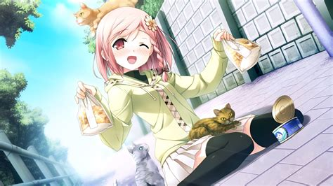 Wallpaper Anime Girl With Cat 1920x1080 Full Hd 2k Picture