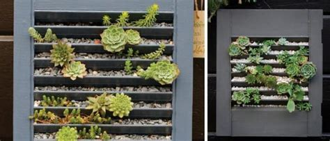14 diy succulent frame of for wall arrangement