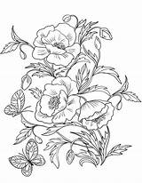 Coloring Poppies Pages Poppy Flower Printable Blossom Amapolas Drawing Para Colorear Template Adult Flowers Drawings Dibujos рисунки Flores Gratis Zinnia sketch template
