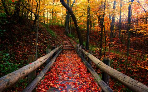 Autumn Wallpaper by 36 Autumn Covered Bridge Wallpaper On Wallpapersafari