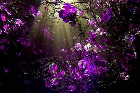 Looking for the best purple background? Purple Wallpapers for Desktop ·① WallpaperTag