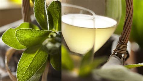 la sauge en cuisine vin blanc glacé à la sauge et au miel idée d 39 apéritif