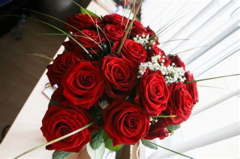 roses de fer telecharger gratuitement