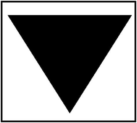 Let Your Light Shine by About Black Triangle Black Triangle Campaign