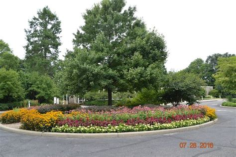 in park picture of mill creek park canfield tripadvisor