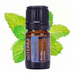 Peppermint Essential Oil - 15ml - Aroma Diffuser ...