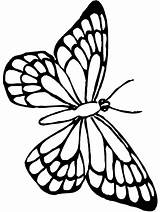 Butterfly Coloring Monarch Pages Outline Butterflies Colouring Cute Printable Drawing Sheets Pretty Templates Flower Template Adult Sketch Google Getdrawings Animal sketch template