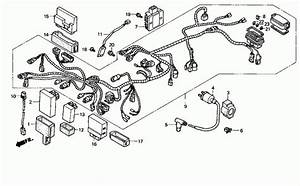 Honda Foreman 450 Parts Diagram
