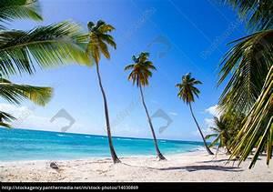 Bilder Von Palmen : palmen am strand von isla saona lizenzfreies bild 14030869 bildagentur panthermedia ~ Frokenaadalensverden.com Haus und Dekorationen