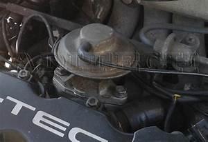 563 Egr Valve Blanking Plates Gasket Daewoo Lanos Cielo 1
