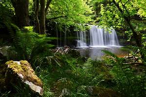 Brecon Beacons National Park England UK waterfall forest ...