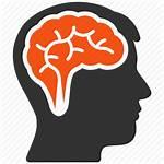 Brain Icon Head Clipart Transparent Memory Idea