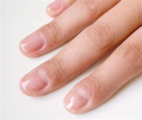 Укрепление ногтей под гель лак базой акриловой пудрой и гелем