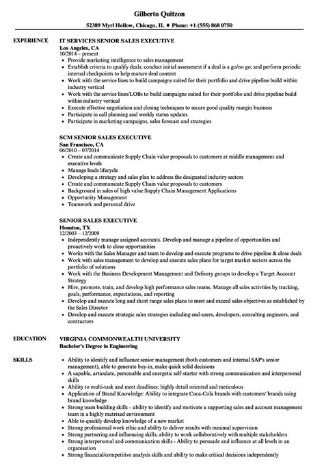 senior executive resume enterprise risk management resume examples great examples