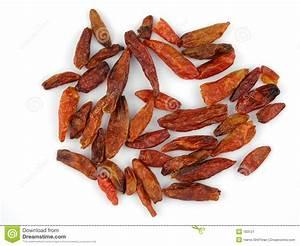 Dried Birdseye Chilis Stock Image - Image: 183121