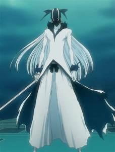 Bleach: Hollow Ichigo