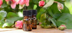 130 Essential Oils  Essential Oil Uses And Benefits