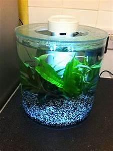 360 Liter Aquarium : marina 360 aquarium 10 l us gal product 12850 ~ Sanjose-hotels-ca.com Haus und Dekorationen