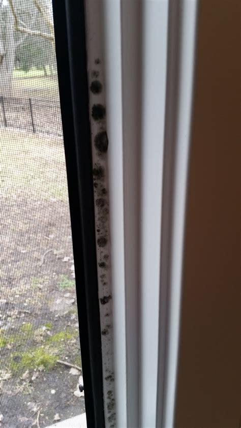 Jen Weld Sliding Patio Doors by Jen Weld Windows Beautiful Windows Showroom U Doors