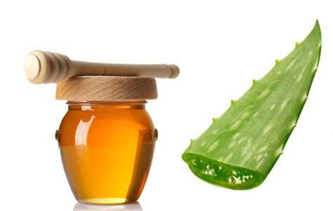aloe vera  miel  combatir la acidez estomacal las