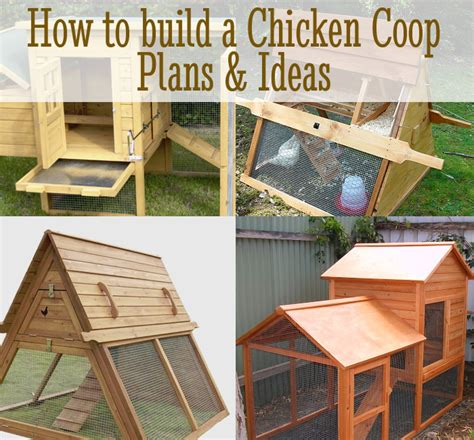 how to make chicken coop diy chicken coop plans ideas diy for life