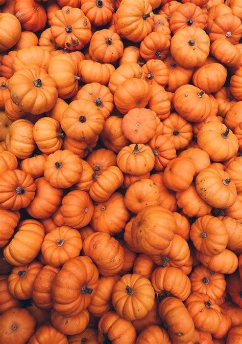 Aesthetic Thanksgiving Wallpaper by Freetoedit Pumpkin Orange Background Aesthetic