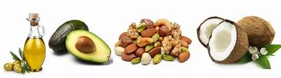 Healthy Fat Sources Fats Foods Diet Bars