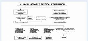 Algorithm For The Etiological Diagnosis Of Hirsutism  1