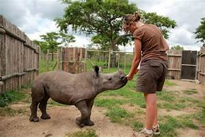 Cuddle Baby Rhinos at this South African Rhino Orphanage ...