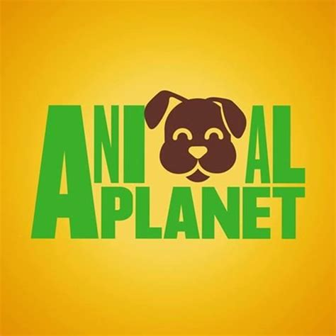 animal planets puppy bowl hits highest ratings   year