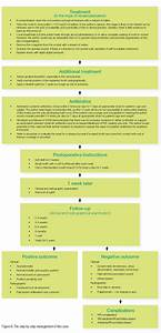 The Management Of Avulsion And Dental Trauma Endodontic