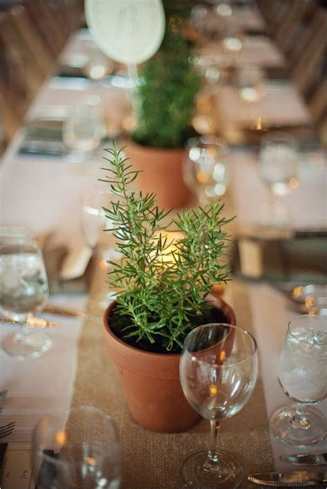 unique ways   potted plants   wedding page