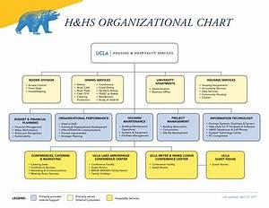 Software Development Organization Chart H Hs Organizational Chart 2018 By Ucla Hhs Marketing Issuu