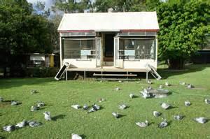 Racing Pigeon Lofts