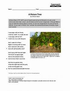 Essay Reviewer will writing service chester sixth grade creative writing prompts creative writing task year 4