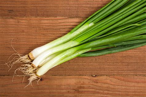 what is a scallion scallion power tcm world
